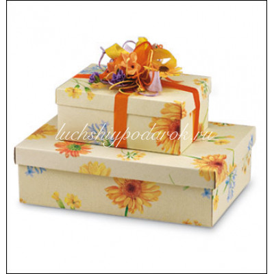 Коробка Gerbere